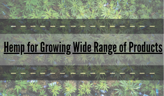Hemp for Growing Wide Range of Products
