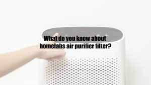 What do you know about homelabs air purifier filter?